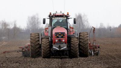 Практически во всех районах Витебской области начали выборочный сев ранних зерновых