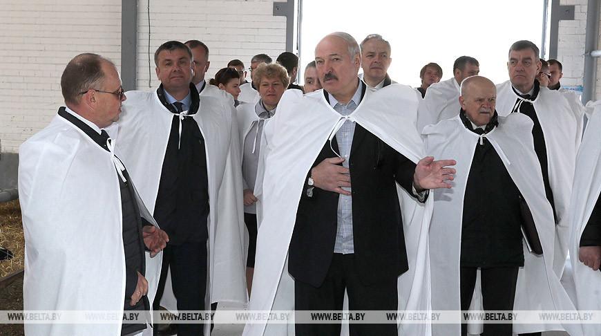 Лукашенко поручил проработать создание многоотраслевых производств в пострадавших после Чернобыля регионах