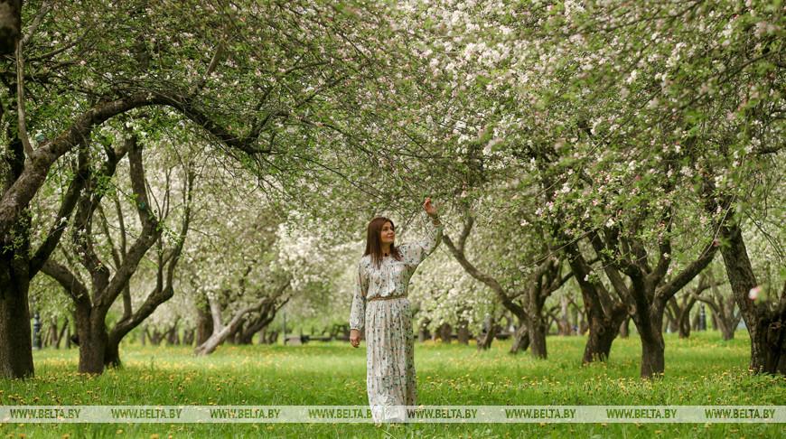 Весна в Лошицком парке
