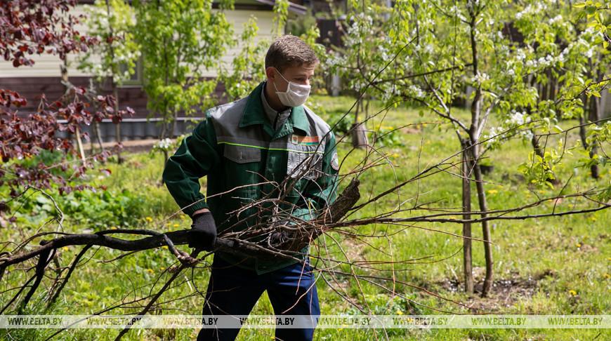 """В Витебской области волонтеры БРСМ проводят """"Неделю добра"""""""