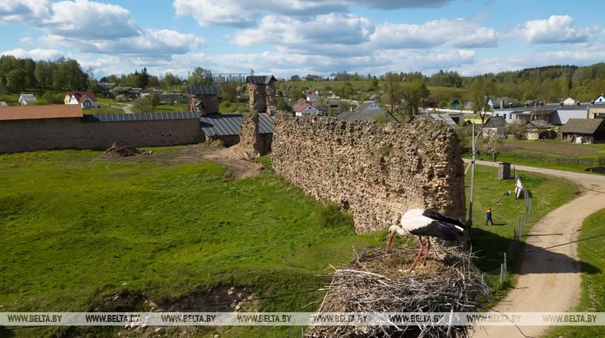 Начался очередной этап консервации стен Кревского замка