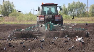 В Речицком районе приступили ко второму севу овса и многолетних трав