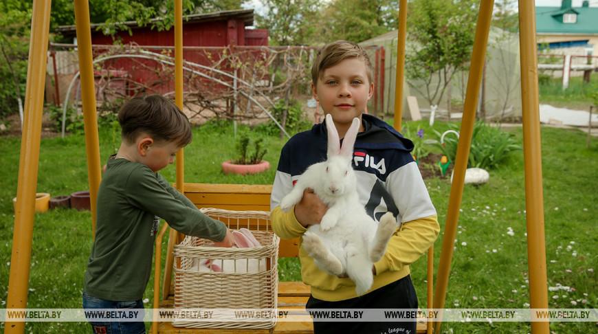 """Благотворительную акцию """"Домашние животные"""" проводит фонд """"Каритас"""""""