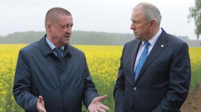 Румас ознакомился с ходом сельхозработ в Могилевской области