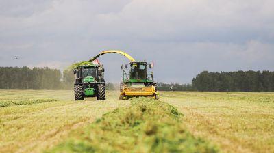 Заготовка кормов идет в Каменецком районе