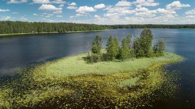 Озеро Долгое в Браславском районе