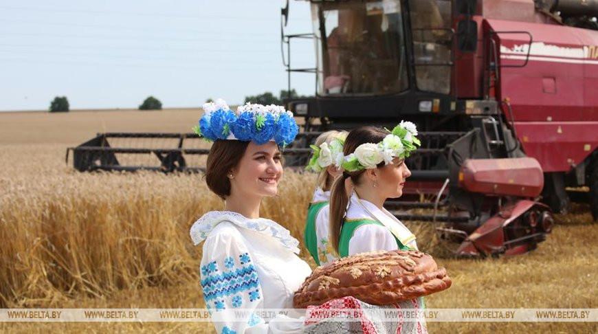 Передовиков жатвы чествовали в Добрушском районе