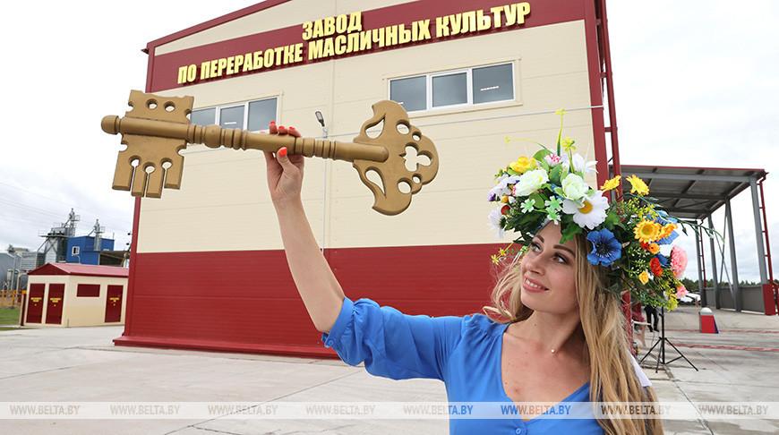 Завод по переработке масличных культур открылся в Витебском районе