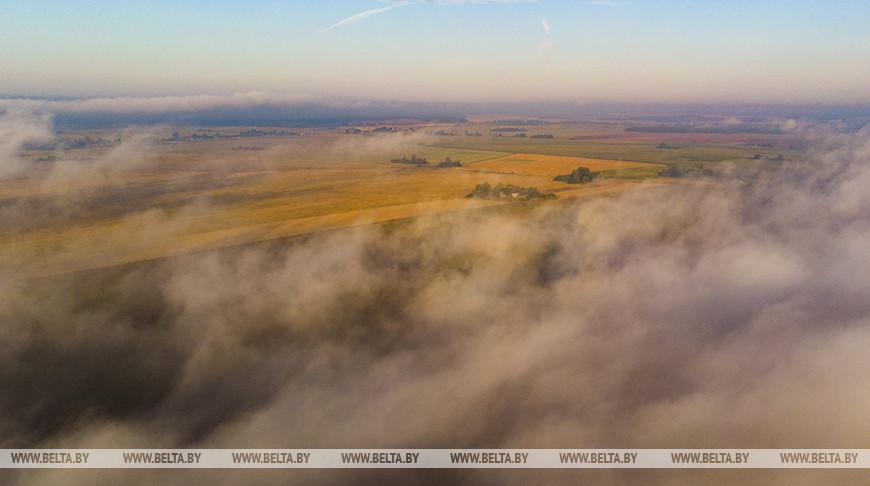 Туман в Свислочском районе