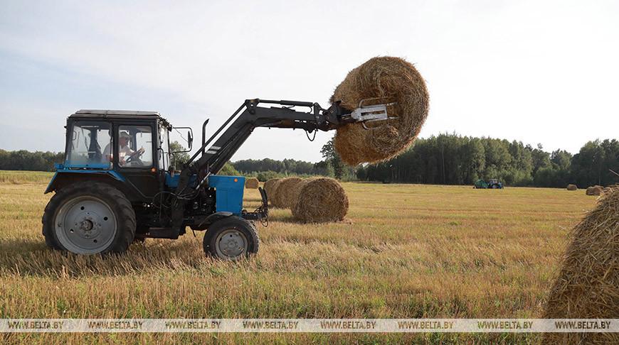 К севу озимых зерновых готовятся в Кировском районе