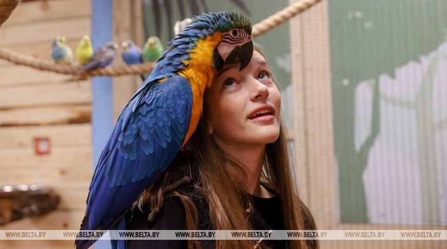 В Минске открылась первая попугайня