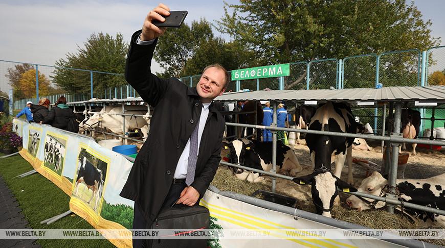 """Лучшую племенную корову выбрали на выставке """"Белагро"""""""