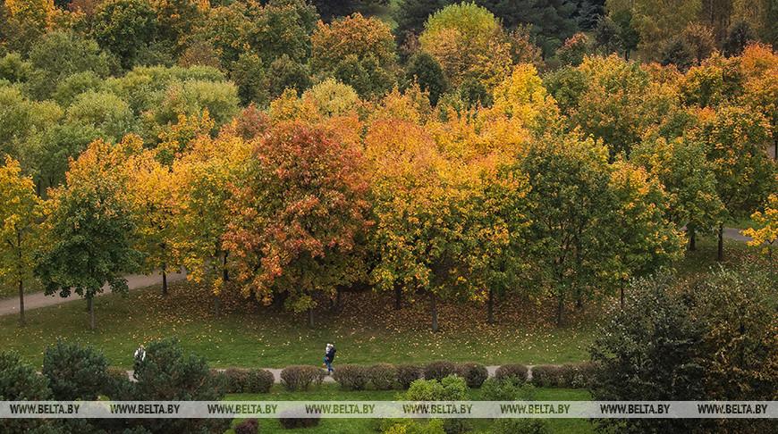 """Осень в минском парке """"Уручье"""""""