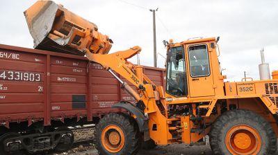 50 вагонов сахарной свеклы ежедневно отправляется из Могилева на Слуцкий сахарорафинадный комбинат