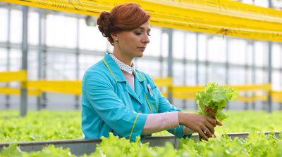 В Минске продолжается формирование стабилизационного фонда сельскохозяйственной продукции