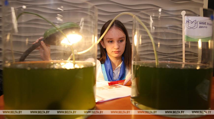 """В Гродно проходит конкурс """"100 идей для Беларуси"""""""