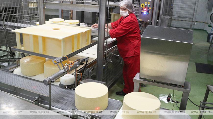 """Славгородский филиал """"Бабушкиной крынки"""" модернизирует линию по производству сыров"""