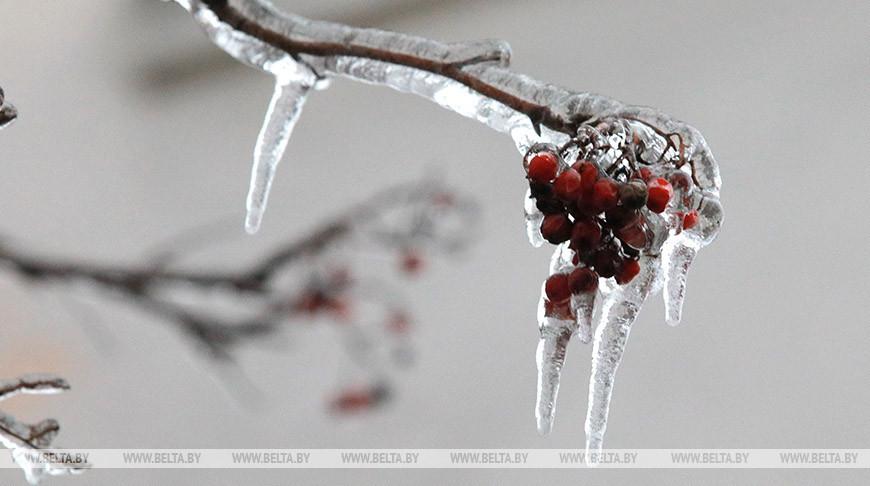 Зимний Могилев