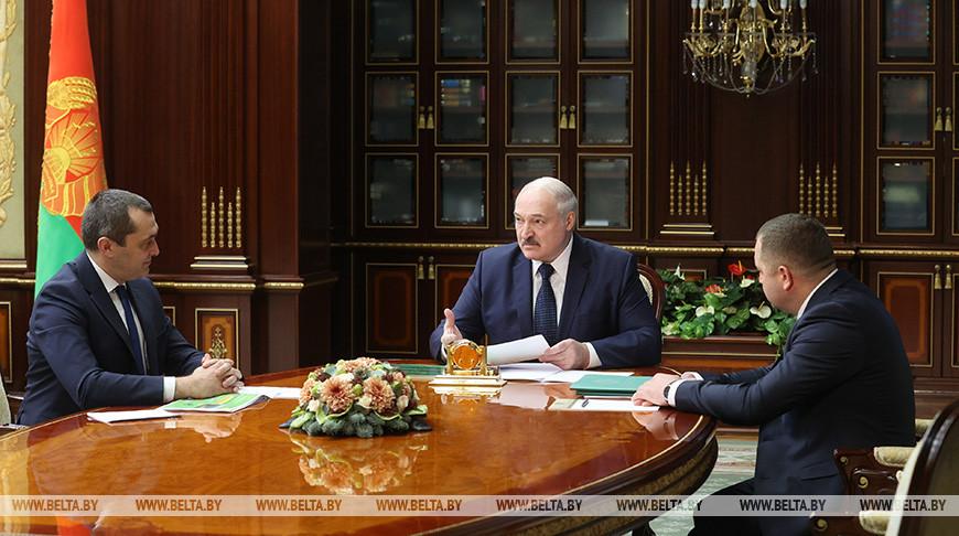 Лукашенко оценил развитие лесного хозяйства в Беларуси