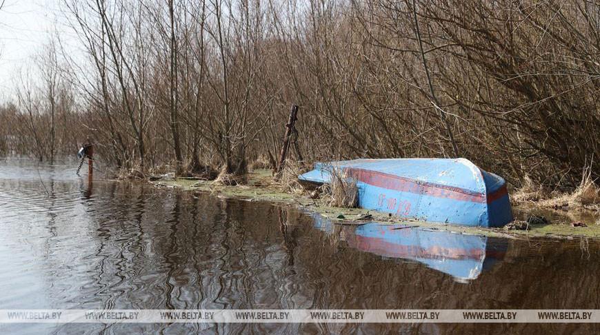 Припять вышла из берегов в Петриковском районе