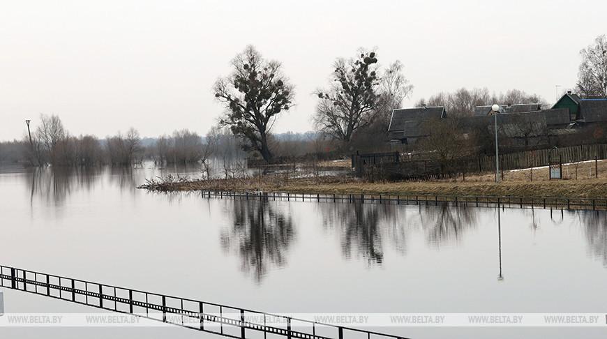 В Петриковском районе Припять вплотную подошла к сельским подворьям