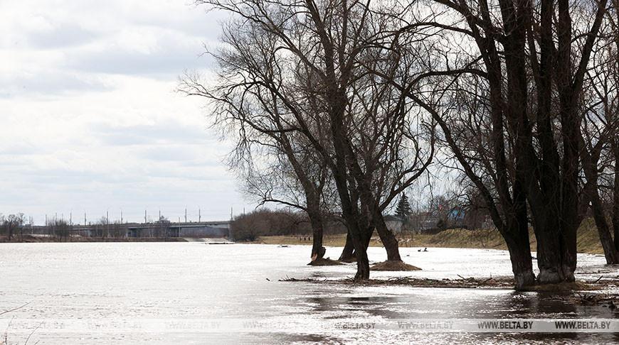 На Днепре в Могилеве растет уровень воды
