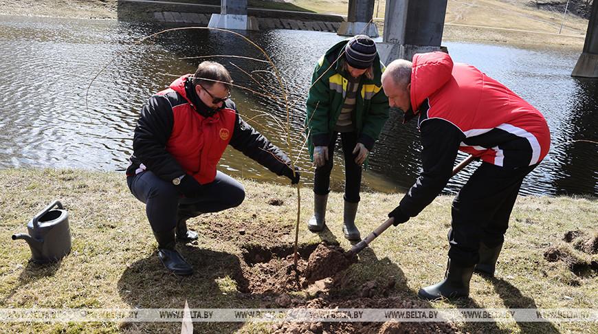 Более 50 аллей и скверов в честь Года народного единства появятся в Витебской области