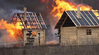 Учения по ликвидации крупного лесного пожара прошли в Городокском районе