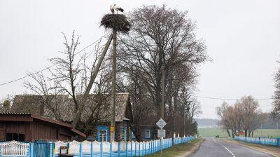 Наровлянский район - один из самых пострадавших от чернобыльской катастрофы