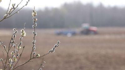 Сев зерновых и зернобобовых культур идет в Шумилинском районе