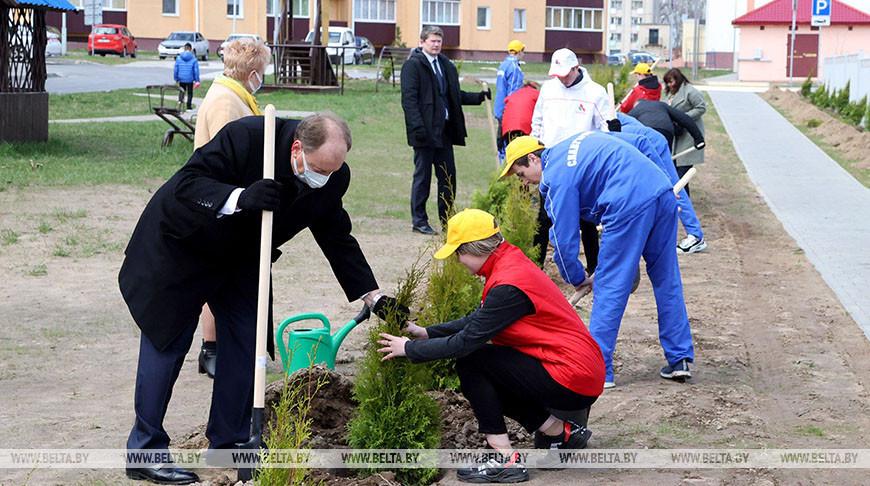 Кочанова приняла участие в закладке аллеи в Славгороде
