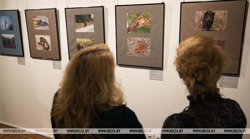 """Выставочный проект """"Покинутая земля"""" открылся в Национальном историческом музее"""