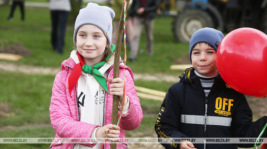 В Гродненском парке десятки семей высадили свои деревья