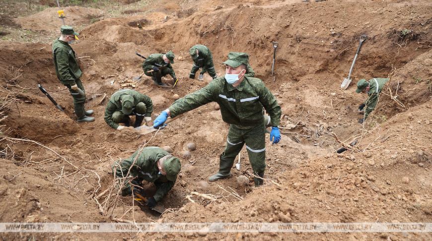 В Логойском районе начались раскопки ранее неизвестного захоронения времен ВОВ