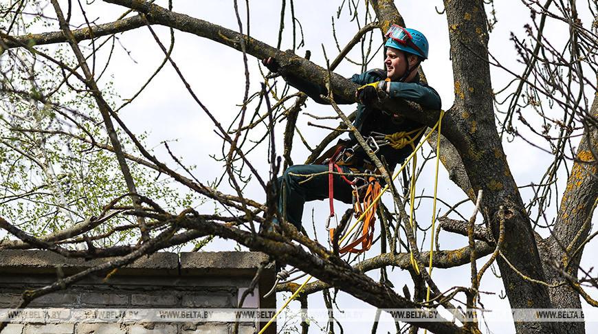 Действия при техногенных авариях отработали на учениях МЧС в Пинском районе