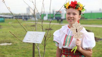 В Минске к 90-летию белорусской энергосистемы открыли памятный камень и заложили аллею