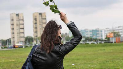В Бресте наблюдается массовый вылет мошек