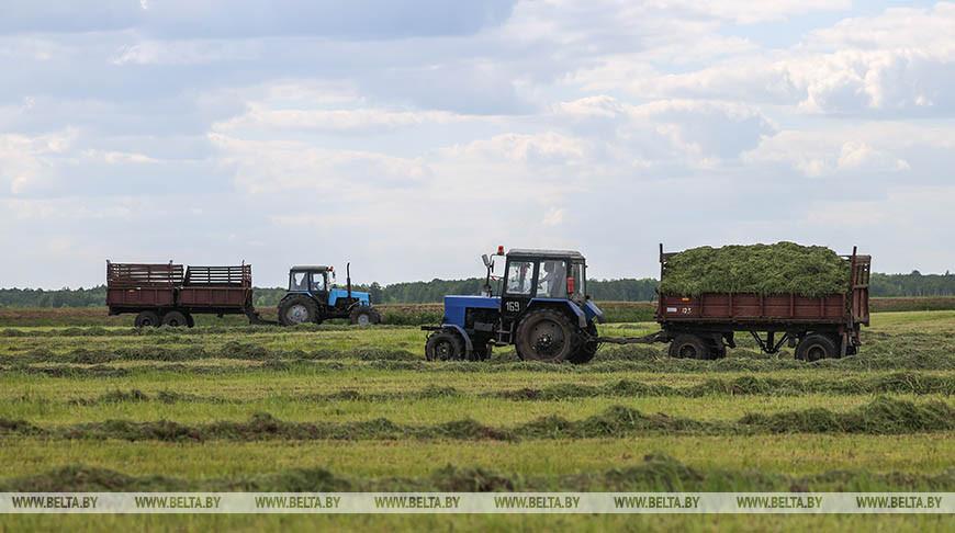 В Кобринском районе заготавливают корма
