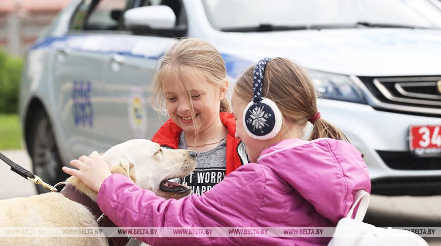 В Минске отмечают День защиты детей
