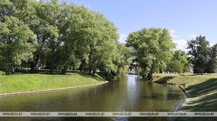 Теплая погода и дожди ожидаются в Беларуси 8 июня