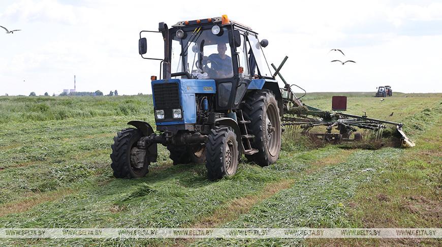 Заготовка кормов ведется в Гомельском районе