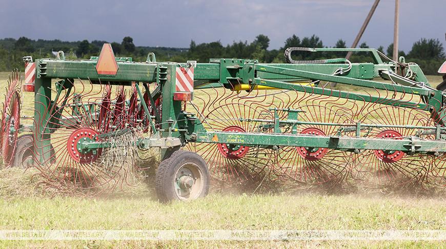 Заготовка кормов идет в Миорском районе