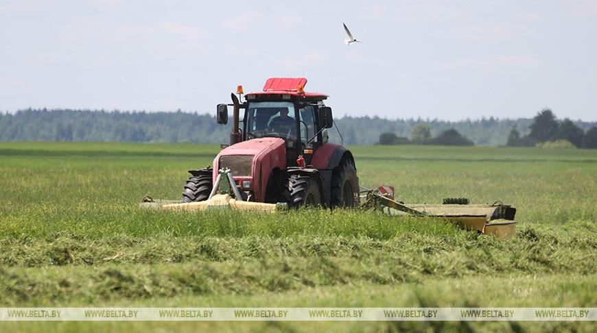 Заготовка кормов идет в Бешенковичском районе
