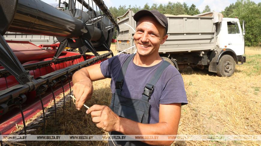 В Могилевском районе идет уборка зерновых