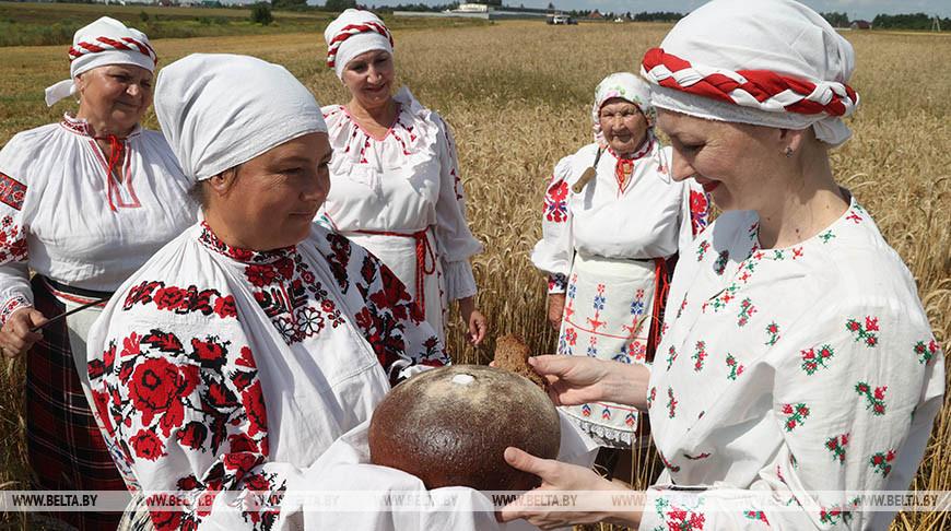 """Обряд """"Зажинки"""" провели в Могилевском районе"""