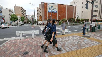 Повседневная жизнь района Регоку в Токио