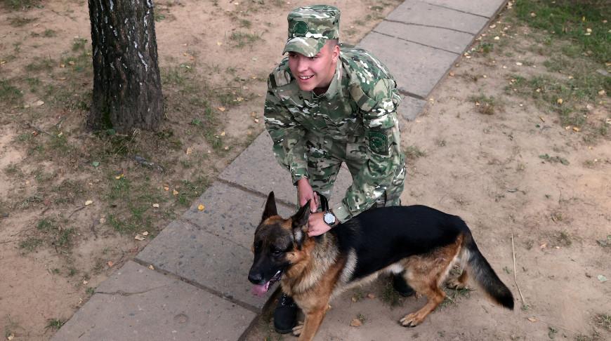 Чемпионат внутренних войск по служебному многоборью кинологов проходит в Могилеве