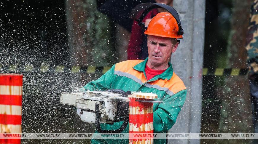 День работников леса отметили в Беловежской пуще