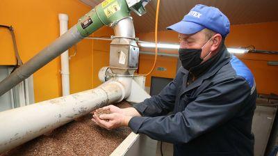 Производство льняного масла из семян нового урожая начали в Лидском районе