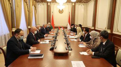 Андрейченко встретился с индонезийскими парламентариями